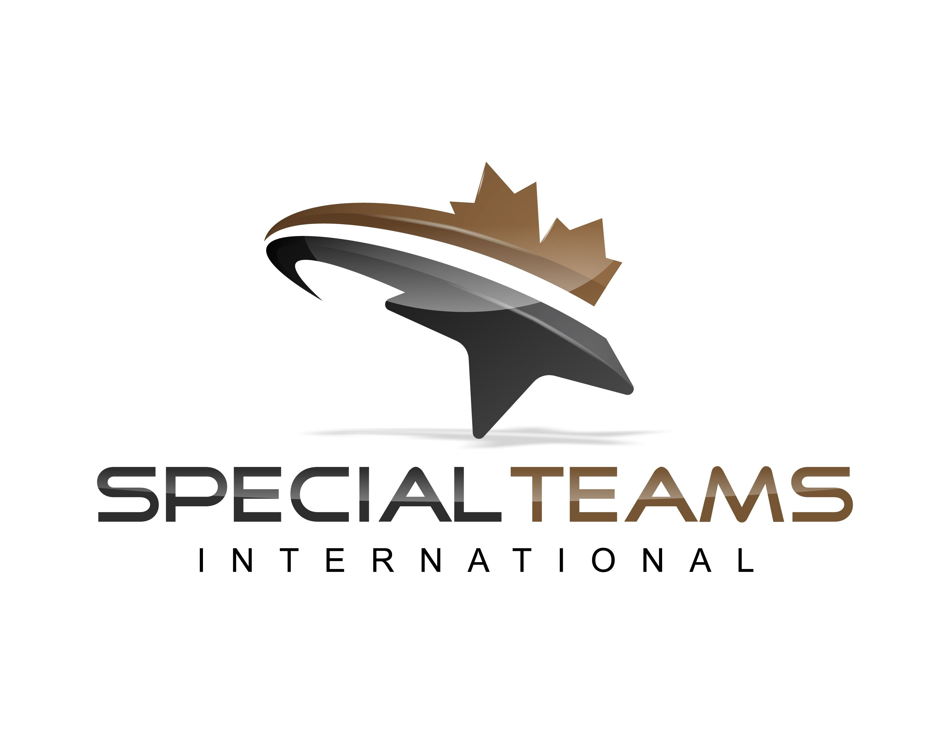 Special Teams International Inc logo